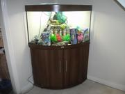250Ltr FISH TANK WITH EVERYTHING